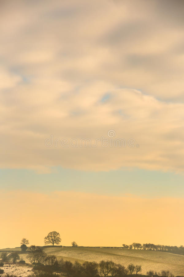 Cold morning warmed with the rising glow of the sun through thick clouds. Showing fields, clouds and solitary tree on the skyline stock image