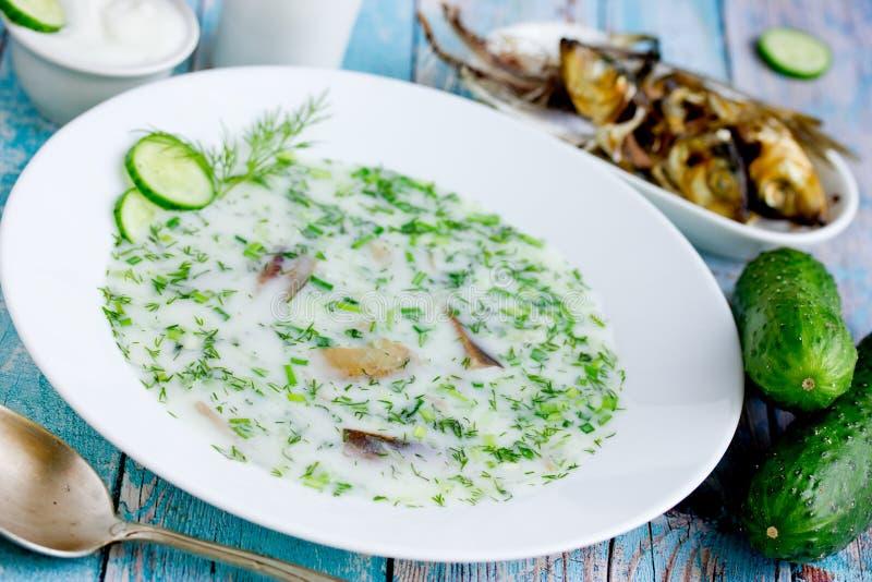 Cold refreshing soup okroshka with smoked fish. Cold refreshing soup okroshka made from mineral soda water, kefir, fresh cucumber, dill, onion, garlic and smoked stock image
