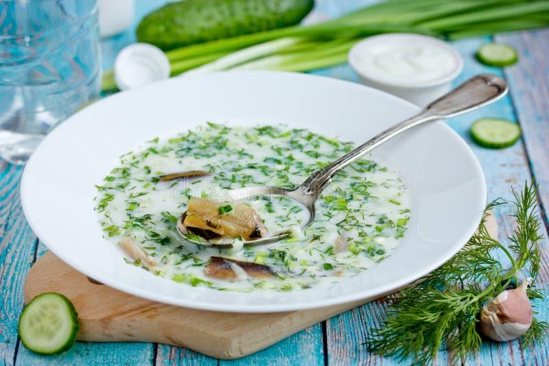 Cold refreshing soup okroshka with smoked fish. Cold refreshing soup okroshka made from mineral soda water, kefir, fresh cucumber, dill, onion, garlic and smoked royalty free stock photos