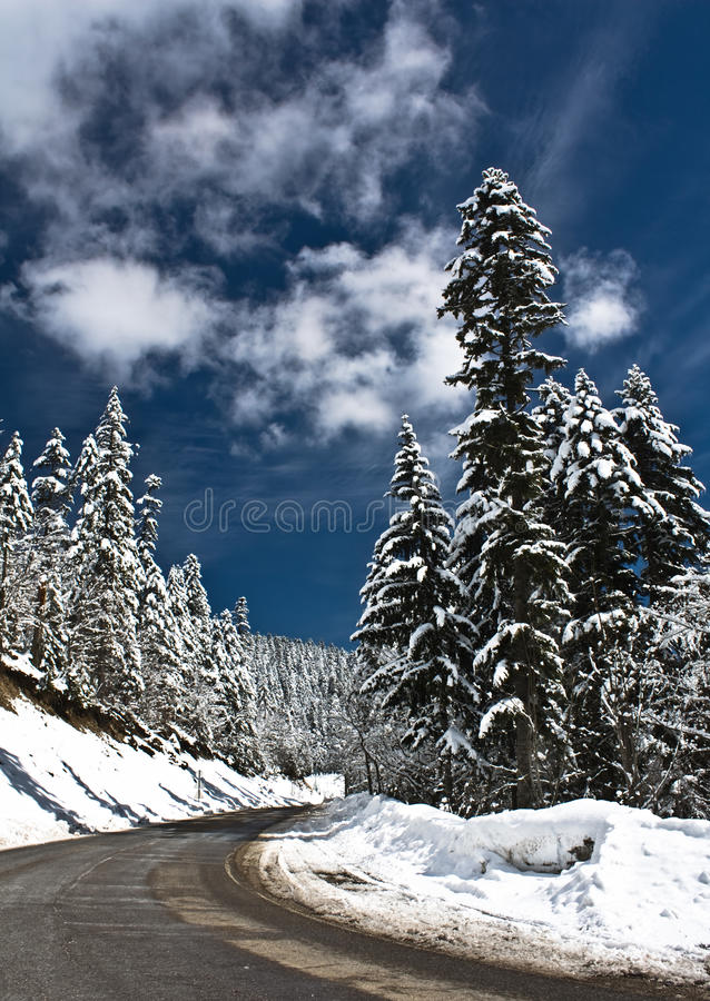 Cold and snowy winter road stock images