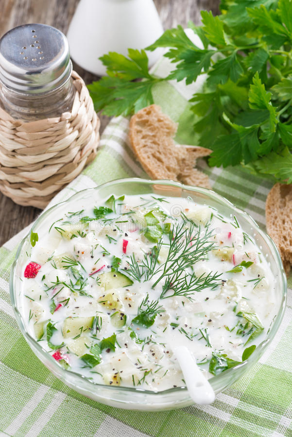 Cold soup with fresh vegetables and kefir (okroshka) in bowl. Cold soup with fresh vegetables and kefir (okroshka) in a bowl, top view, vertical royalty free stock images