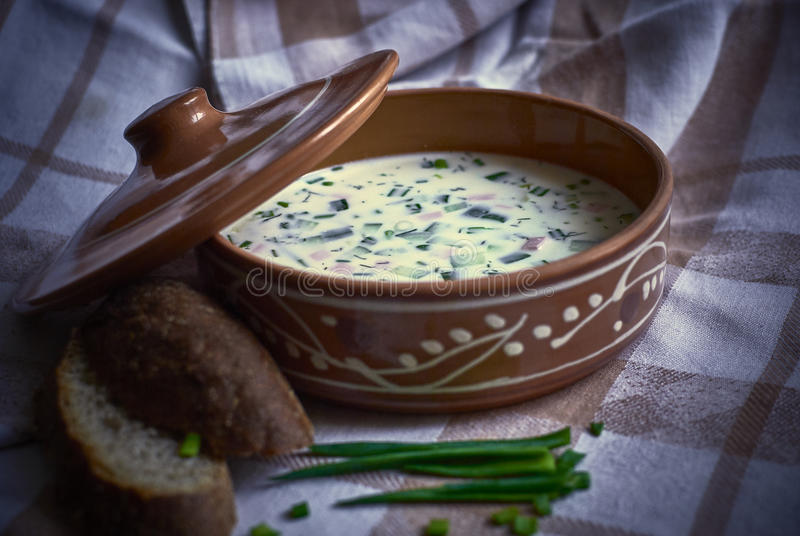 Cold soup with green onions and bread royalty free stock image