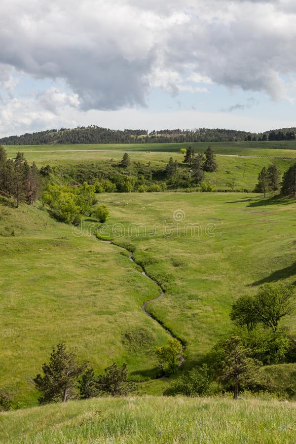 Cold Spring Creek. Sunshine on a small grassy valley with Cold Spring Creek running through it in Wind Cave National Park, South Dakota stock photos
