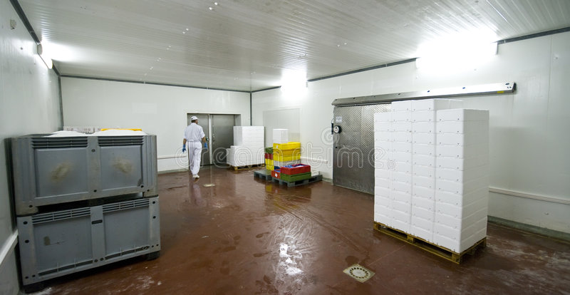 Cold storage room. A cold storage room with white polystyrene boxes for transporting processed fish. The image is part of Fish Processing Manufacture collection royalty free stock photos