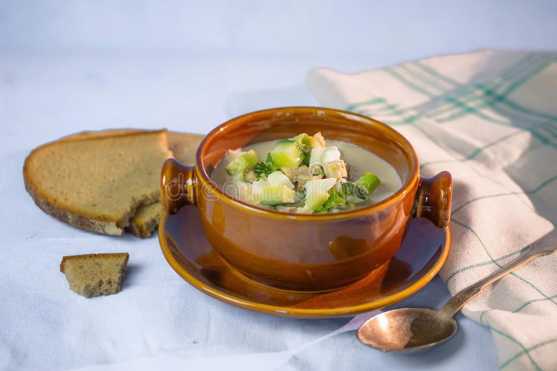 Cold summer soup with vegetables. And meat stock image