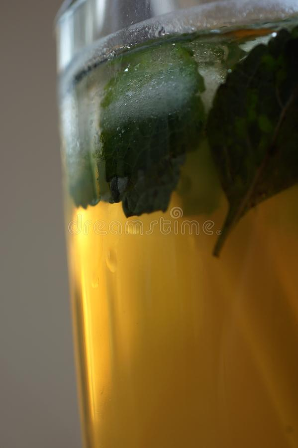 Ice tea with mint in golden hour light. stock photo