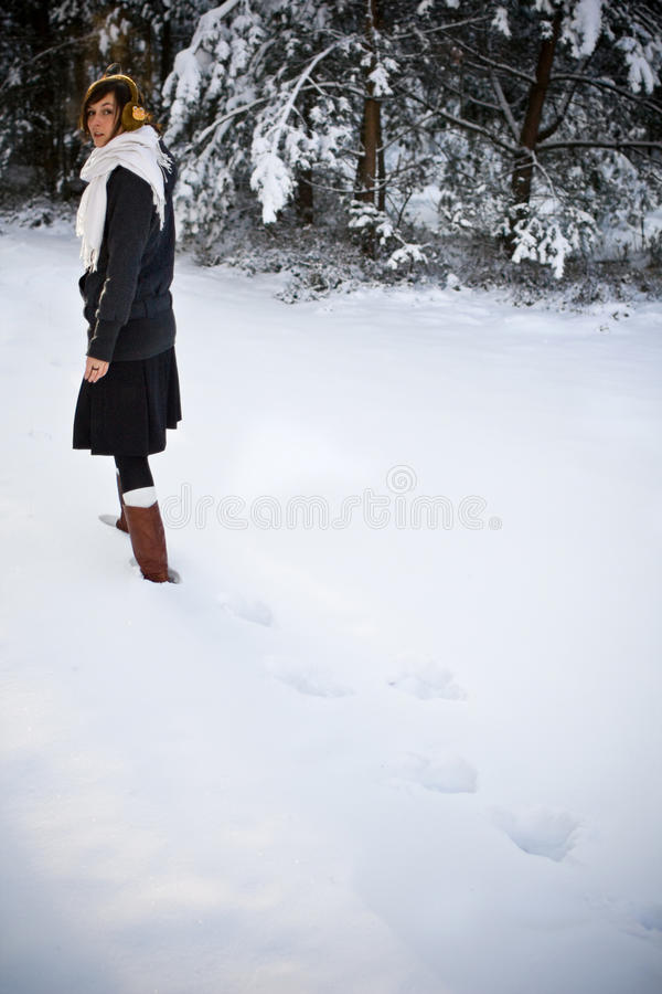 Download Cold winter stock image. Image of lady, january, scenery - 10417283