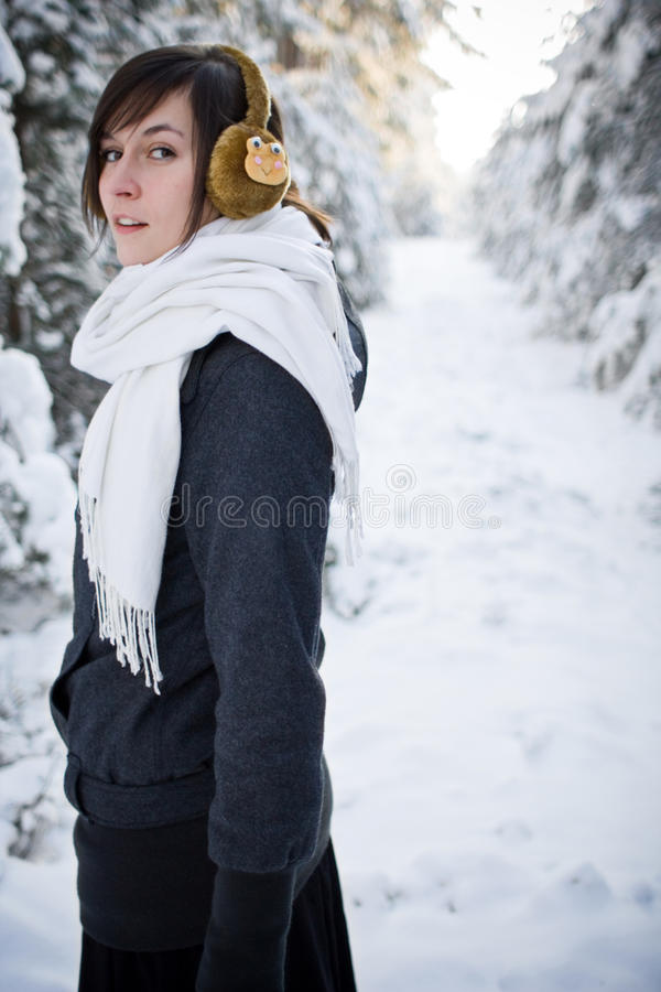 Cold winter royalty free stock image