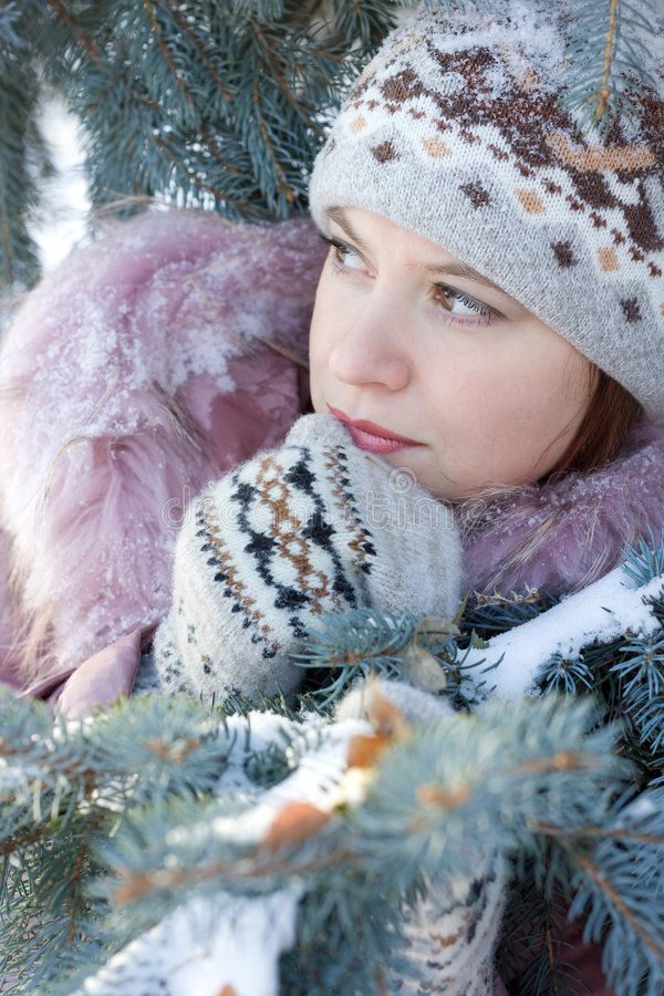 Cold winter royalty free stock photography