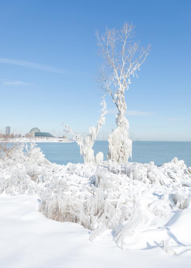 Cold winter in Chicago downtown royalty free stock image