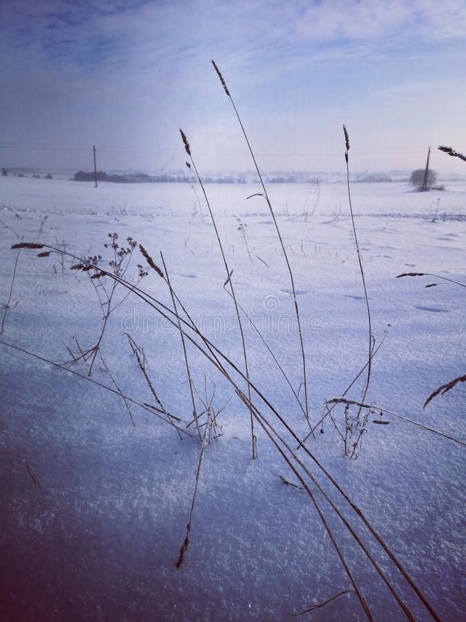 Cold winter landscape royalty free stock image