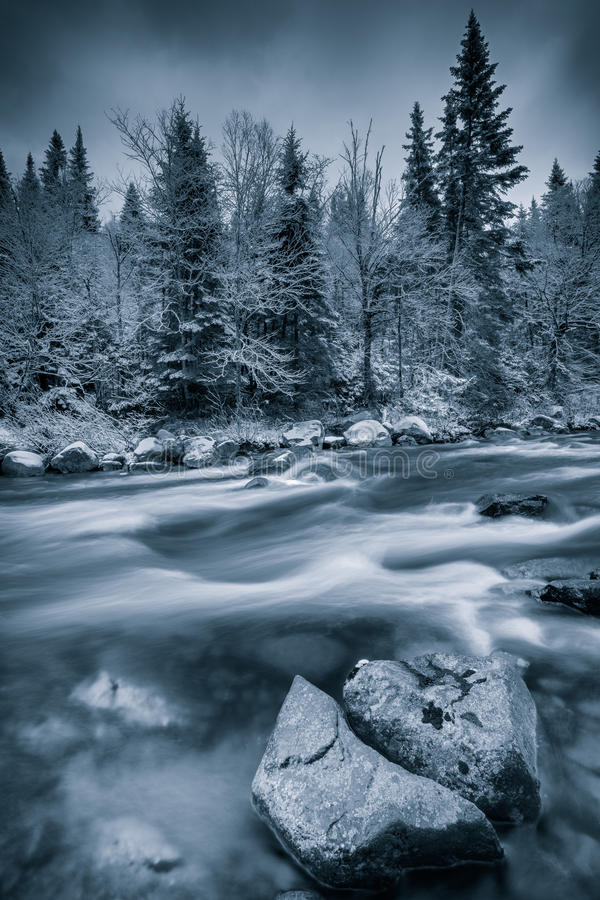 Download Cold Winter Near A River Stock Image - Image: 23996191