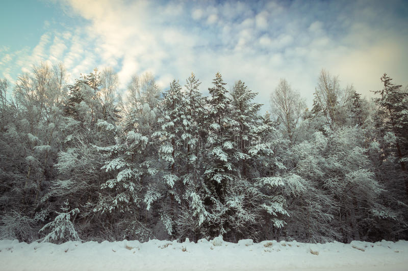 Cold winter in Russia stock images