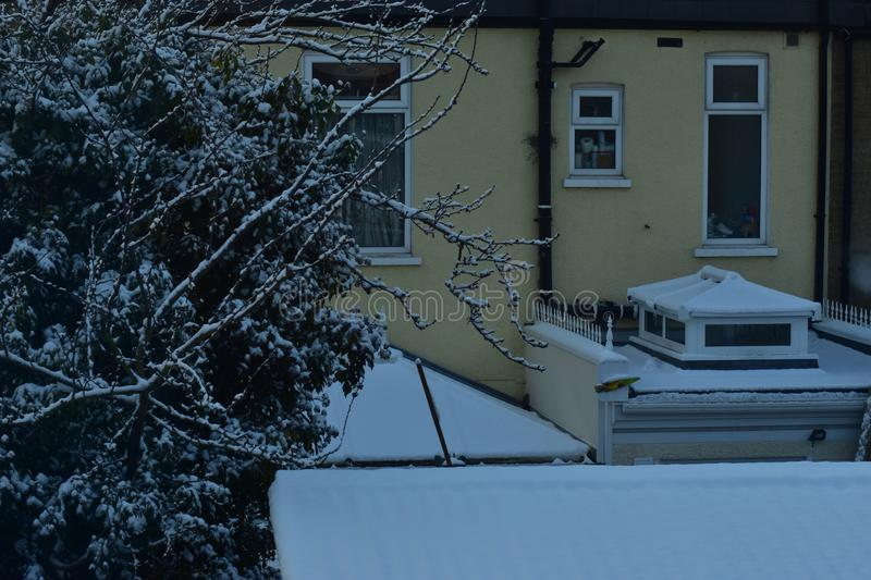 A snow covered tree and roofs on a snowy day stock photos