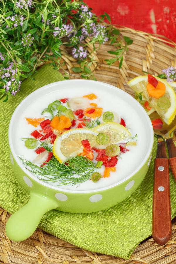 Cold Yogurt soup. With fresh herbs and vegetables. Ready to eat royalty free stock photography