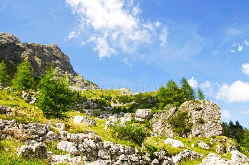 Coldai, dolomity, Włochy fotografia stock