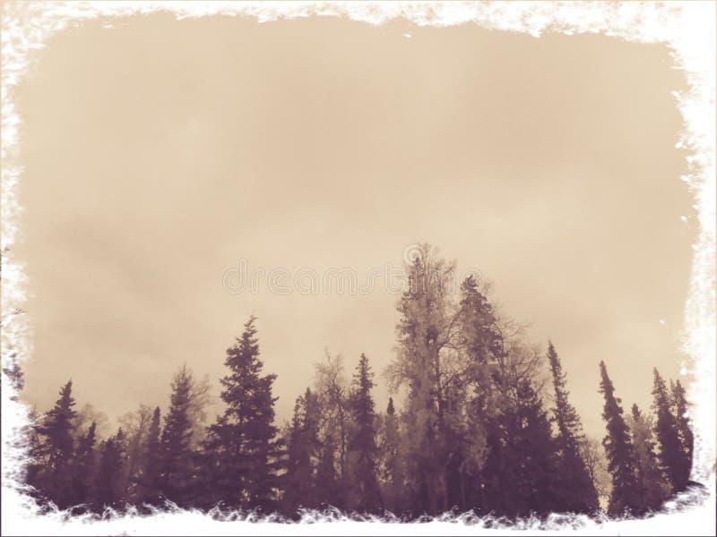 coldness fotos de stock