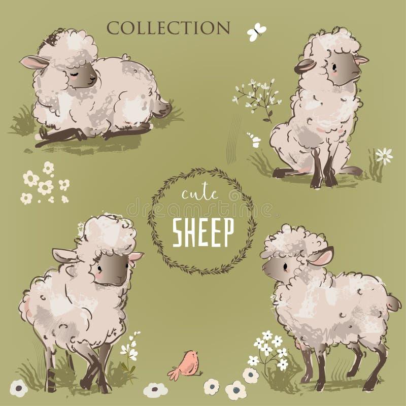 Coleção bonito dos carneiros ilustração do vetor