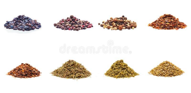 Coleção colorida da variedade das especiarias foto de stock royalty free
