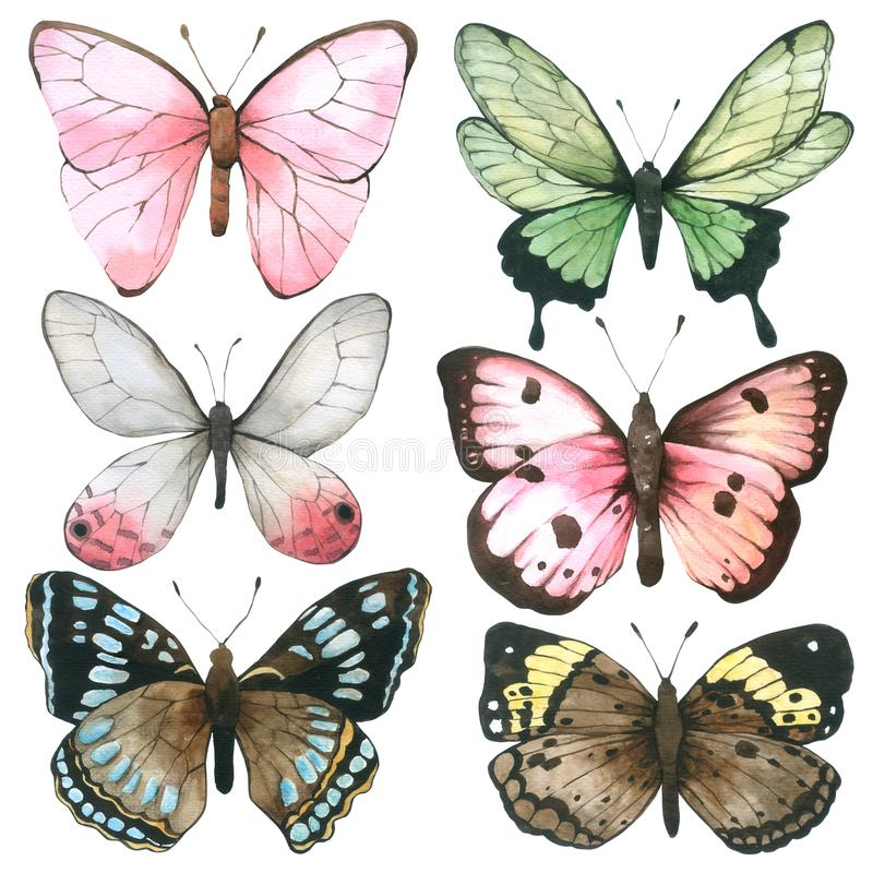 Coleção da aquarela da borboleta isolada no fundo branco, grupo de mão da borboleta tirado pintado para o cartão, papel de parede ilustração do vetor
