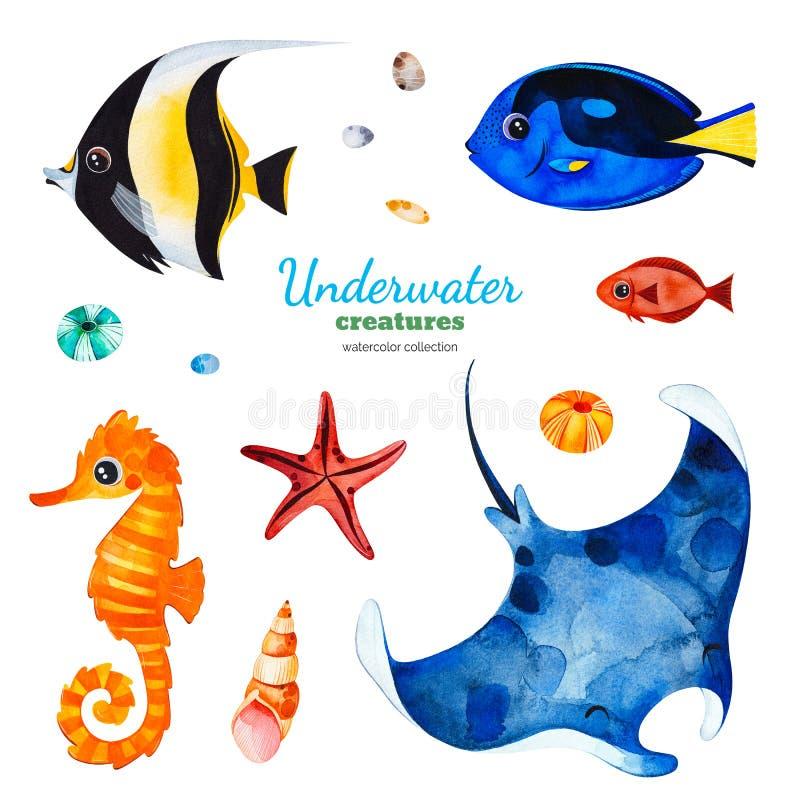 Coleção da aquarela com os peixes corais coloridos escudos, cavalo marinho, estrela do mar ilustração royalty free