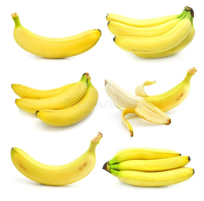 Coleção da banana das frutas isolada no branco imagem de stock royalty free