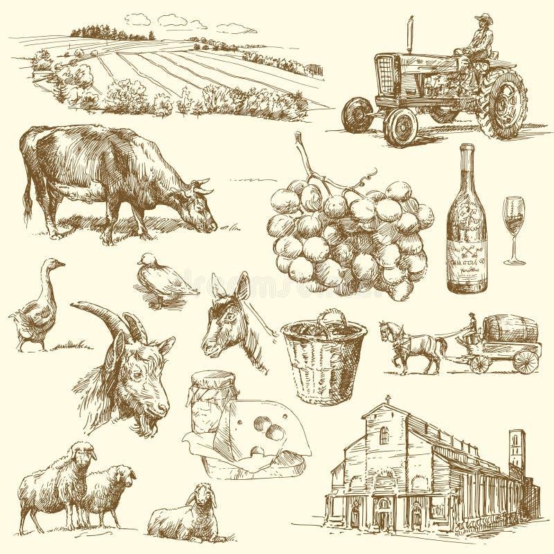 Coleção Da Exploração Agrícola Fotografia de Stock