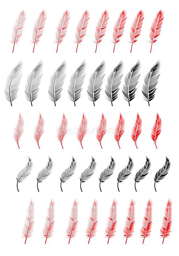 Coleção da ilustração da pena, desenho, gravura ilustração do vetor