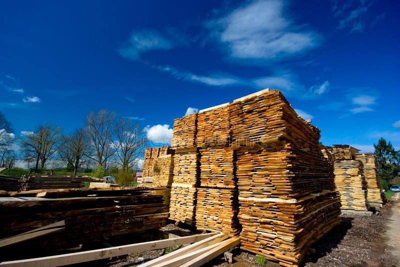 Coleção da madeira serrada imagens de stock