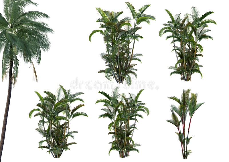 Coleção da planta 3D fotos de stock