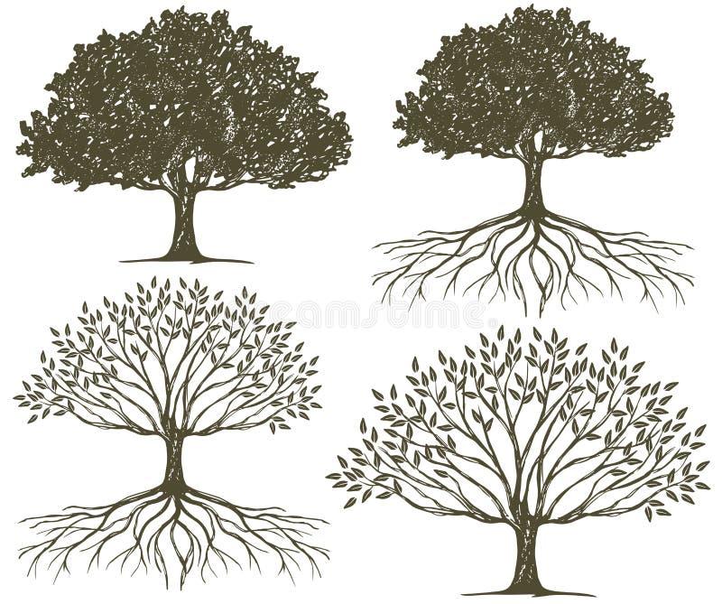 Coleção da silhueta da árvore & das raizes da árvore ilustração royalty free