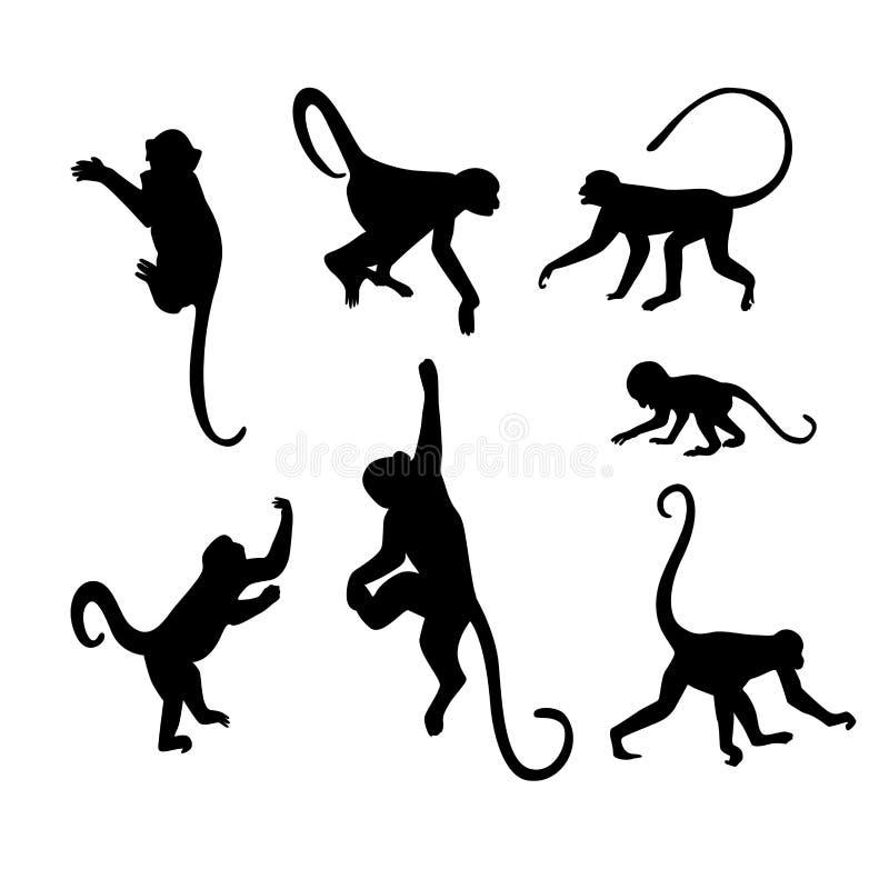 Coleção da silhueta do macaco - ilustração ilustração do vetor
