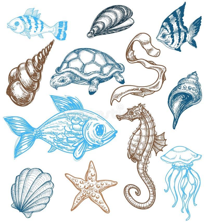 Coleção da vida marinha ilustração royalty free