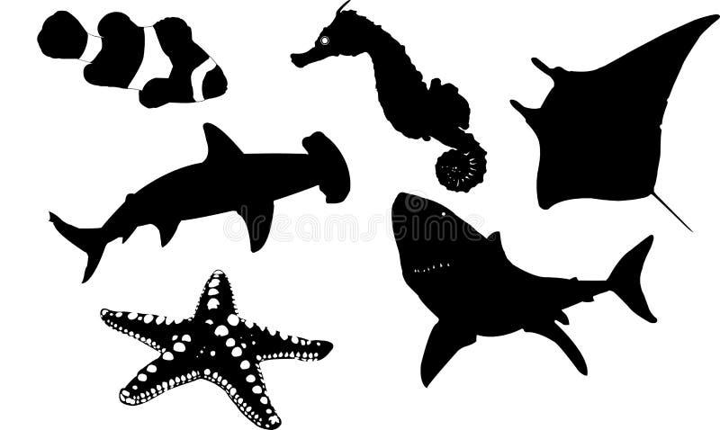 Coleção da vida marinha fotografia de stock