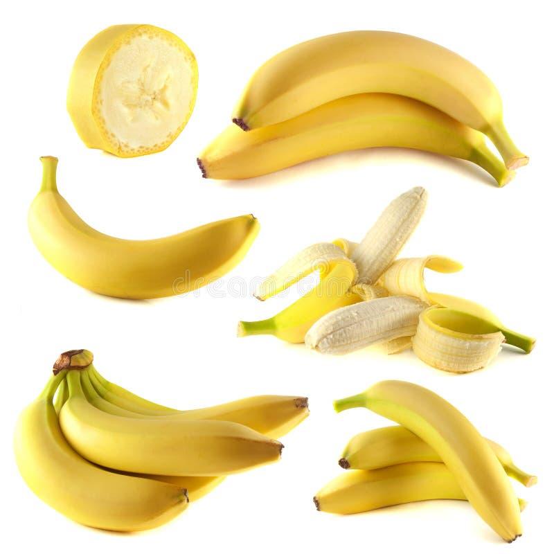 Coleção das bananas no fundo branco fotos de stock royalty free