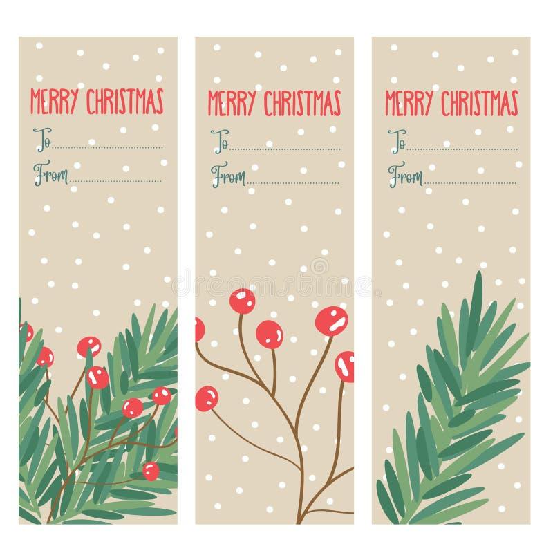 Coleção das etiquetas do Natal com ramos de árvore e bagas do azevinho ilustração stock