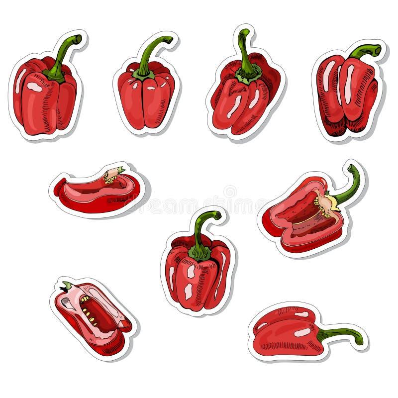 Coleção das etiquetas mão vermelha de pimentas doces tiradas Tinta e esboço colorido no fundo branco Objetos inteiros e cortados ilustração royalty free