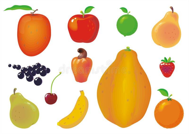 Coleção das frutas ilustração stock