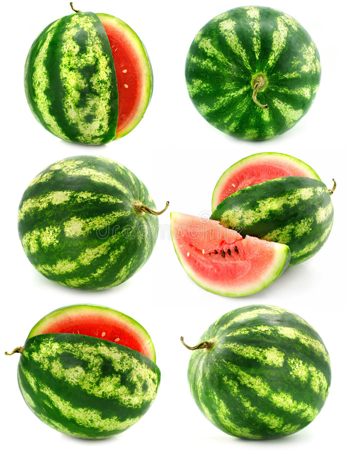 Coleção das frutas do melão de água isoladas fotografia de stock