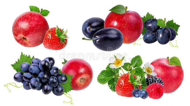 Coleção das frutas isoladas no branco imagens de stock