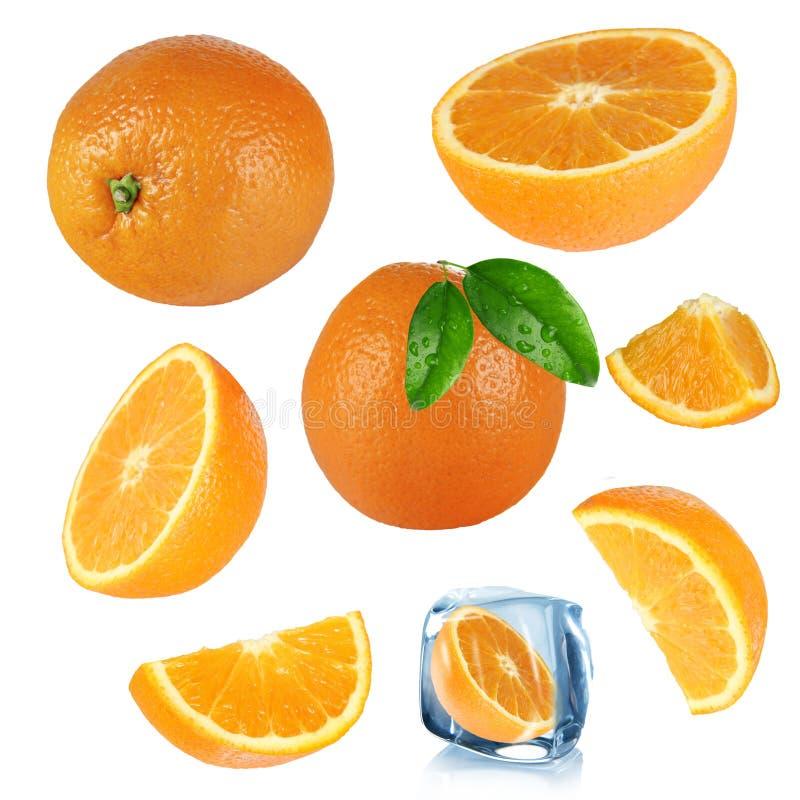 Coleção das laranjas imagem de stock
