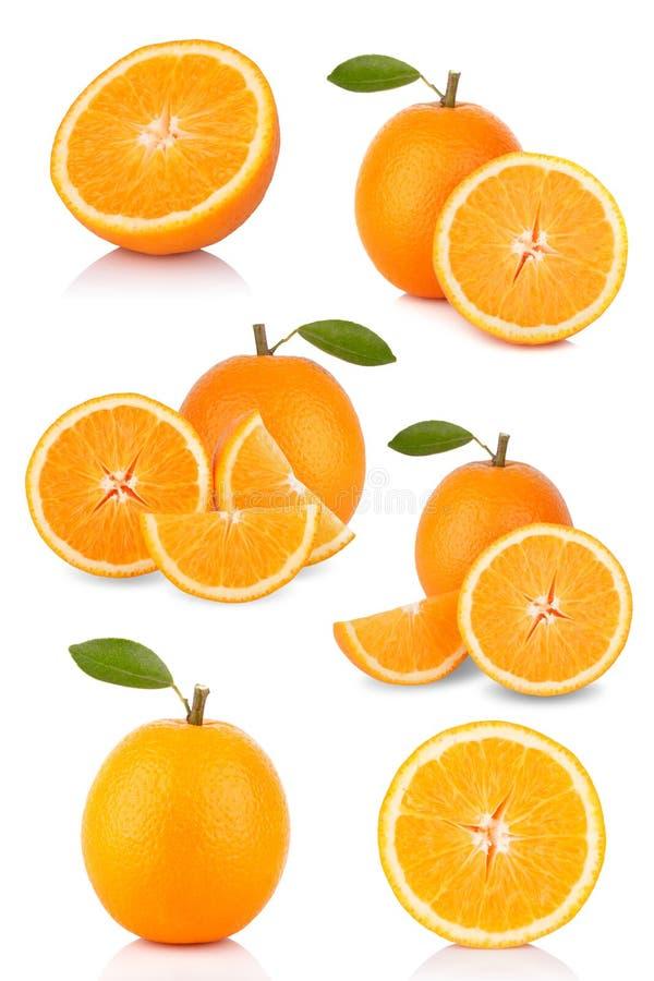 Coleção das laranjas imagens de stock