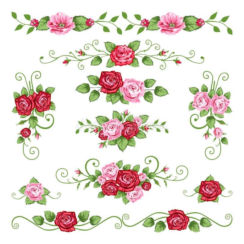 Coleção das rosas ilustração do vetor