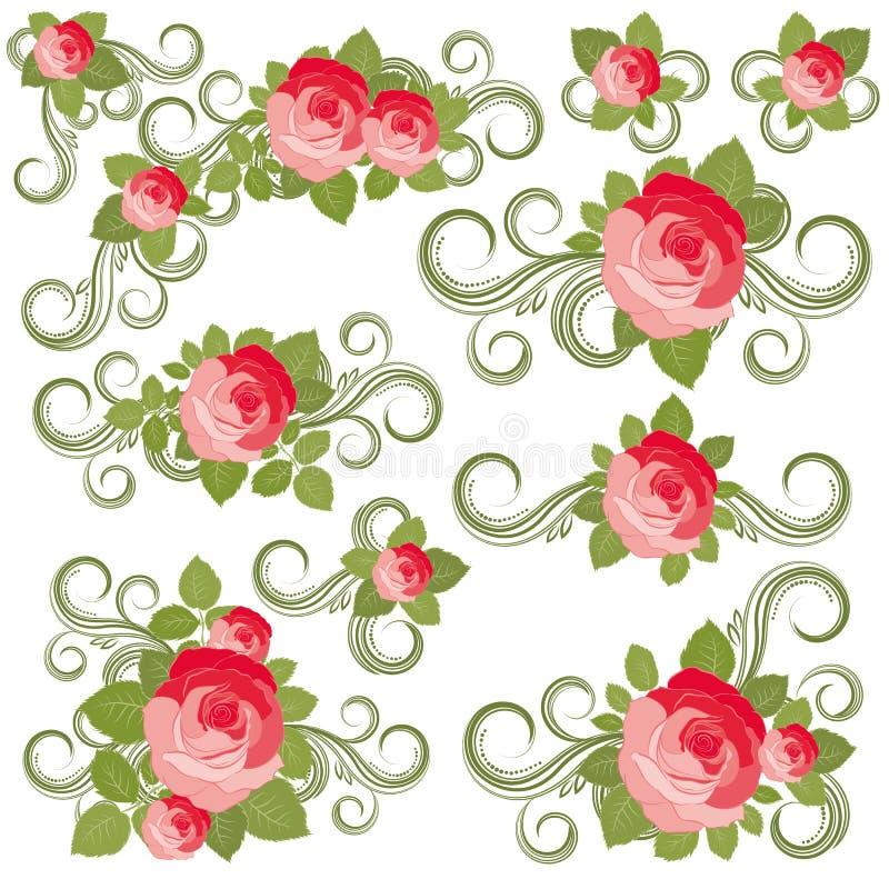 Coleção das rosas ilustração stock