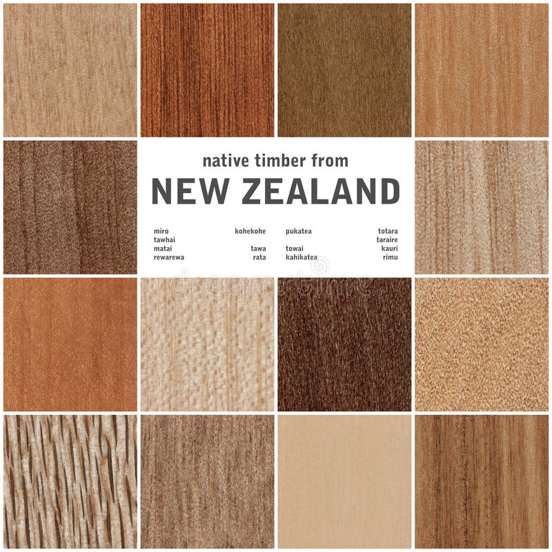 Coleção das texturas de madeira foto de stock royalty free