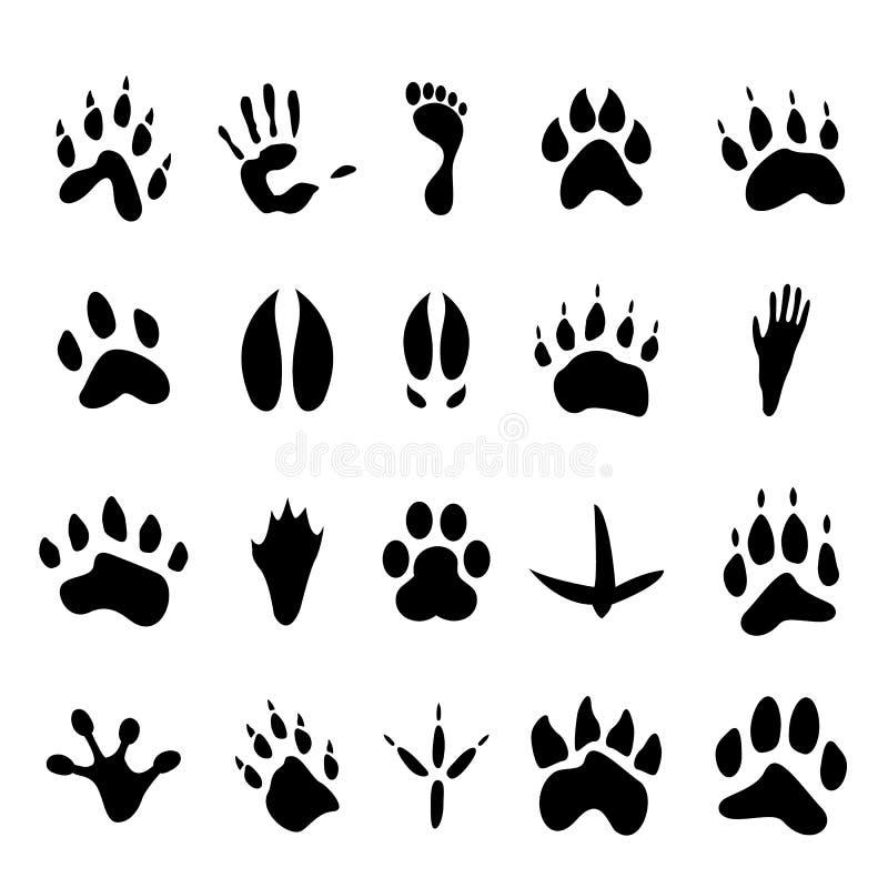 Coleção de 20 animais e de pegadas humanas ilustração stock