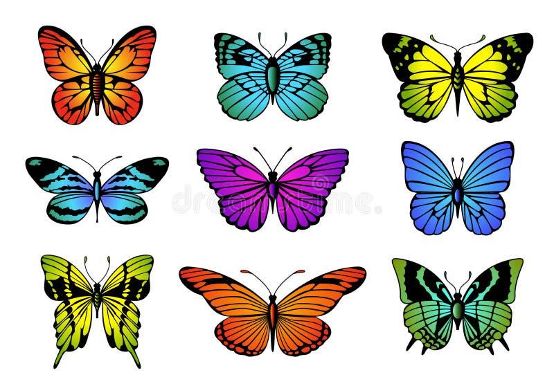 Coleção de borboletas coloridas Grupo da borboleta do vetor ilustração stock