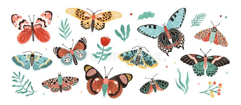 Cole??o de borboletas elegantes e das tra?as ex?ticas isoladas no fundo branco Ajuste dos insetos de voo tropicais com ilustração stock