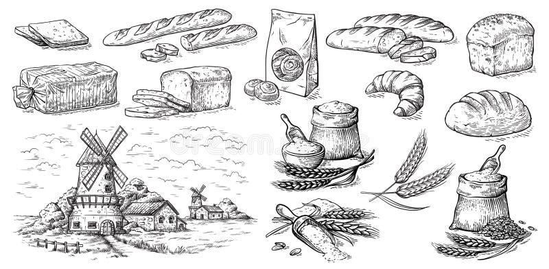 Coleção de elementos naturais do esboço do moinho do pão e de farinha ilustração do vetor