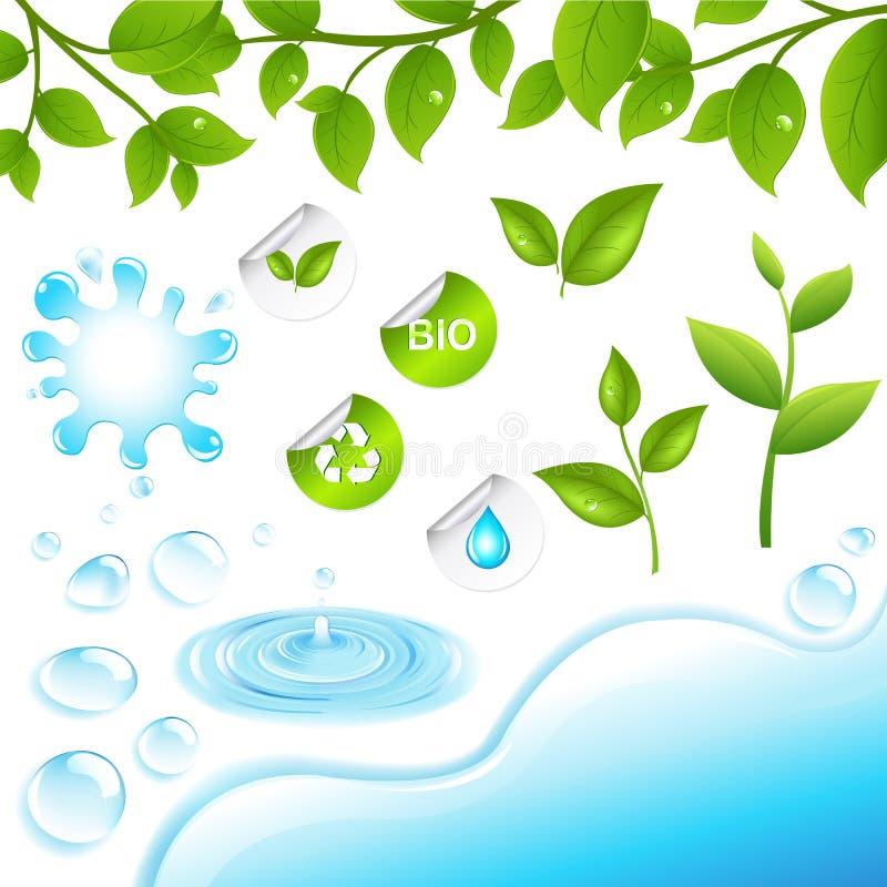 Coleção de filiais e de elementos verdes da água ilustração do vetor